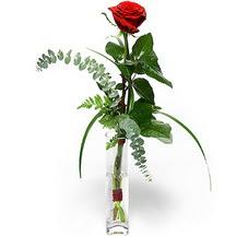Burdur 14 şubat sevgililer günü çiçek  Sana deger veriyorum bir adet gül cam yada mika vazoda