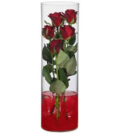 cam içerisinde 7 adet kirmizi gül  Burdur çiçekçiler