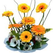 camda gerbera ve mis kokulu kir çiçekleri  Burdur çiçekçi telefonları