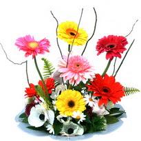 Burdur hediye çiçek yolla  camda gerbera ve mis kokulu kir çiçekleri