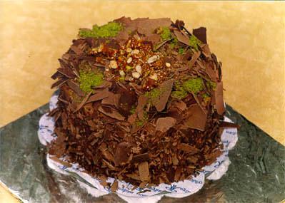 Çikolatali 4 ila 6 kisilik yas pasta  Burdur çiçek gönderme sitemiz güvenlidir