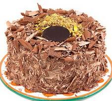 çikolatali 4 ile 6 kisilik yas pasta  Burdur çiçek servisi , çiçekçi adresleri