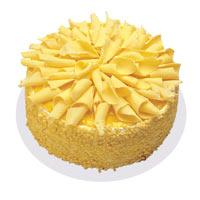 Muzlu pasta 4 ile 6 kisilik yas pasta  Burdur çiçekçi telefonları