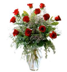 Vazo içerisinde 11 kirmizi gül  Burdur çiçek siparişi vermek