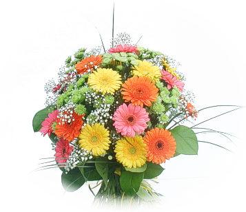 13 adet gerbera çiçegi buketi  Burdur online çiçek gönderme sipariş