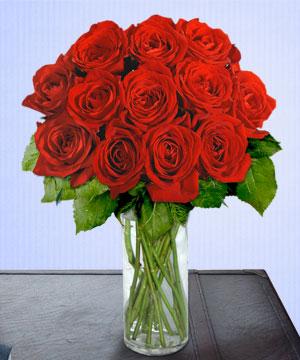 Anneme 12 adet cam içerisinde kirmizi gül  Burdur çiçek siparişi sitesi