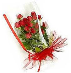 13 adet kirmizi gül buketi sevilenlere  Burdur çiçek siparişi vermek