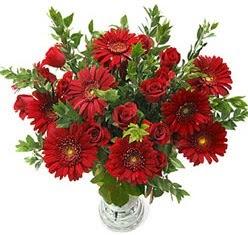5 adet kirmizi gül 5 adet gerbera aranjmani  Burdur hediye çiçek yolla