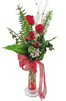 Çiçek gönderin cam vazoda 3 gül çiçekleri  Burdur çiçek siparişi sitesi