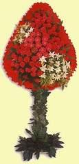 Burdur çiçek gönderme  dügün açilis çiçekleri  Burdur çiçek online çiçek siparişi