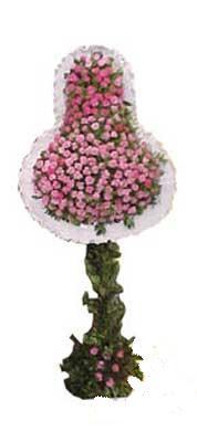 Burdur ucuz çiçek gönder  dügün açilis çiçekleri  Burdur internetten çiçek siparişi