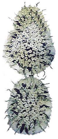 Burdur uluslararası çiçek gönderme  nikah , dügün , açilis çiçek modeli  Burdur hediye çiçek yolla