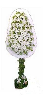 Burdur çiçek siparişi sitesi  nikah , dügün , açilis çiçek modeli  Burdur online çiçek gönderme sipariş