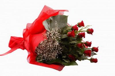 Burdur çiçek siparişi sitesi  11 adet kirmizi gül buketi çiçekçi