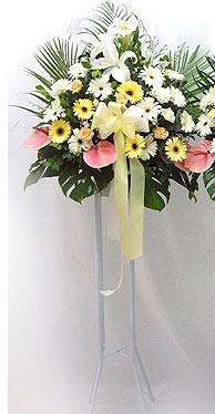 Burdur online çiçek gönderme sipariş   perförje çiçegi dügün çiçekleri
