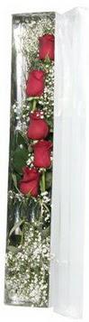 Burdur çiçek siparişi sitesi   5 adet gülden kutu güller
