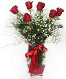 7 adet gülden cam içerisinde güller  Burdur 14 şubat sevgililer günü çiçek