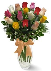 15 adet vazoda renkli gül  Burdur internetten çiçek satışı