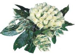 Burdur internetten çiçek siparişi  9 Beyaz gül Özel kisiler için