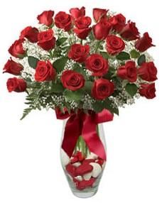 17 adet essiz kalitede kirmizi gül  Burdur çiçek mağazası , çiçekçi adresleri
