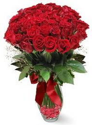 19 adet essiz kalitede kirmizi gül  Burdur 14 şubat sevgililer günü çiçek