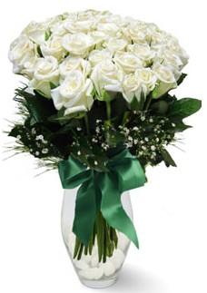 19 adet essiz kalitede beyaz gül  Burdur çiçekçiler