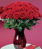 Burdur çiçek online çiçek siparişi  11 adet Vazoda Gül sevenler için ideal seçim