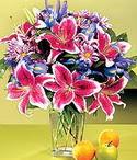 Burdur çiçek mağazası , çiçekçi adresleri  Sevgi bahçesi Özel  bir tercih