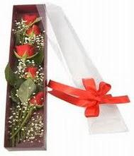 kutu içinde 5 adet kirmizi gül  Burdur internetten çiçek siparişi
