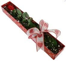 Tek kirmizi gül kutu içerisinde  Burdur güvenli kaliteli hızlı çiçek