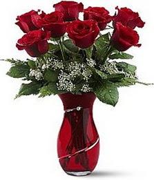 Vazo içinde 8 adet kirmizilar içinde güller  Burdur internetten çiçek siparişi