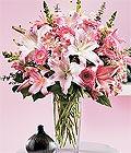 Burdur çiçek yolla , çiçek gönder , çiçekçi   Kazablanka biçme vazoda