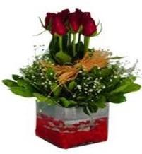 Burdur çiçek gönderme  7 adet mika yada cam vazoda gül tanzimi
