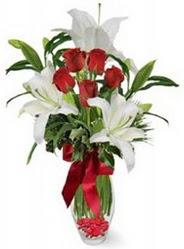 Burdur çiçek siparişi vermek  5 adet kirmizi gül ve 3 kandil kazablanka