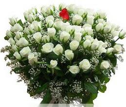 Burdur internetten çiçek satışı  100 adet beyaz 1 adet kirmizi gül buketi