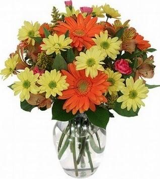 Burdur hediye sevgilime hediye çiçek  vazo içerisinde karışık mevsim çiçekleri