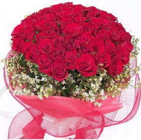 Burdur online çiçekçi , çiçek siparişi  29 adet kırmızı gülden buket