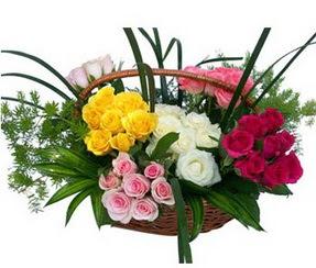 Burdur ucuz çiçek gönder  35 adet rengarenk güllerden sepet tanzimi