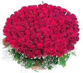 Burdur online çiçekçi , çiçek siparişi  100 adet kırmızı gülden görsel buket