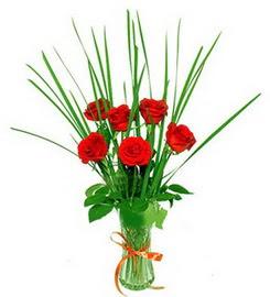 Burdur çiçek , çiçekçi , çiçekçilik  6 adet kırmızı güllerden vazo çiçeği