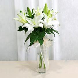 Burdur anneler günü çiçek yolla  2 dal kazablanka ile yapılmış vazo çiçeği