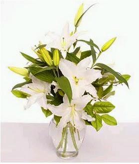 Burdur çiçek gönderme  2 dal cazablanca vazo çiçeği