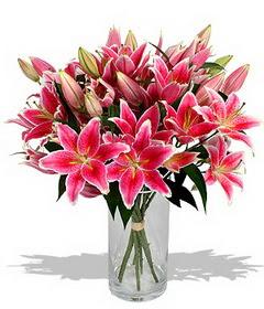 4 dal cazablanca görsel vazosu  Burdur çiçekçi mağazası