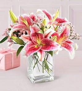 2 dal kazablanka görsel vazosu  Burdur çiçek siparişi sitesi