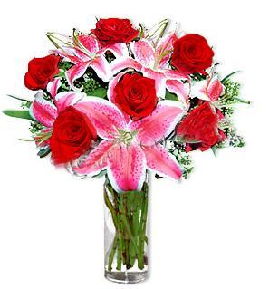 Burdur çiçek yolla  1 dal cazablanca ve 6 kırmızı gül çiçeği
