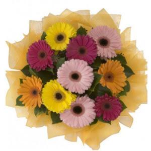 Burdur İnternetten çiçek siparişi  11 adet karışık gerbera çiçeği buketi