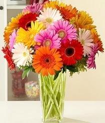 Burdur çiçek servisi , çiçekçi adresleri  15 adet gerbera çiçek vazosu