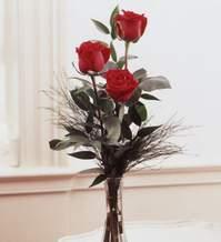 Burdur internetten çiçek satışı  Vazoda 3 adet güzel gül
