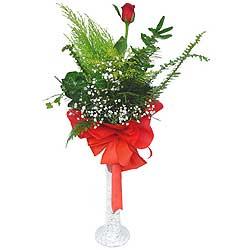 Burdur anneler günü çiçek yolla  Cam vazoda masum tek gül