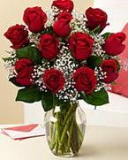 Sevgilime hediye 9 adet 1.ci kalite gül  Burdur anneler günü çiçek yolla
